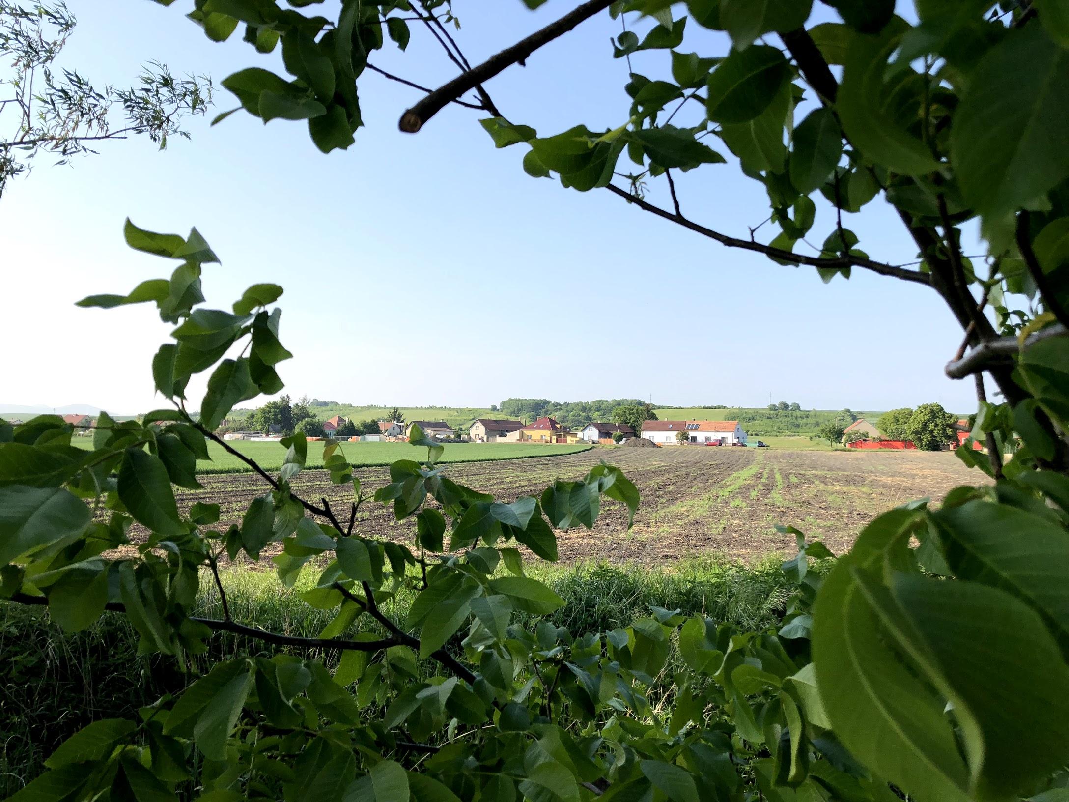 Pohled na pozemek z polí